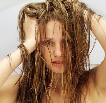 knoblauch shampoo